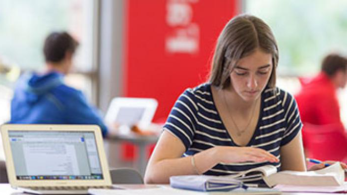 Red Knight student studying in the library.